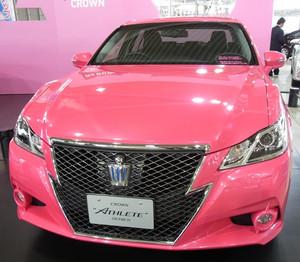 Rimg0163_pink1